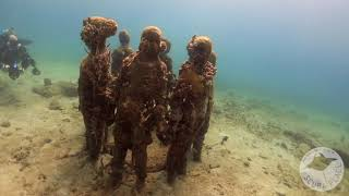 Grenada 2020 with The Scuba Place