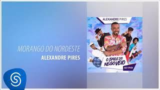 Baixar Alexandre Pires - Morango do Nordeste (O Baile do Nêgo Véio - Ao Vivo) [Áudio Oficial]