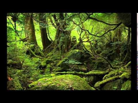 Deep's Old school Jungle Mix Vol.7