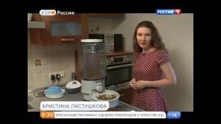 Утро России на канале Россия 1. С кем оставить домашних животных?