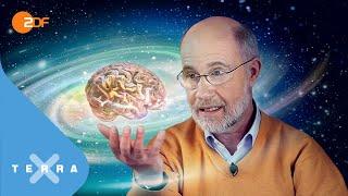 Hat das Universum ein Bewusstsein? | Harald Lesch