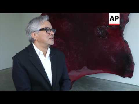 Artist Anish Kapoor hits out at Brexit