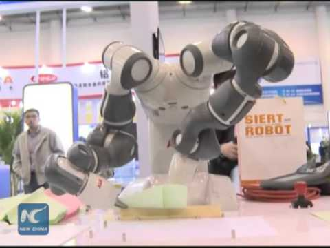 Intelligent robots expected to solve labor shortage in China