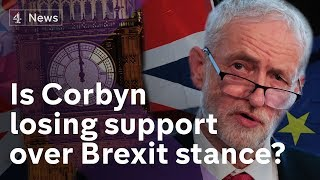 Is Jeremy Corbyn's Brexit stance costing him support?