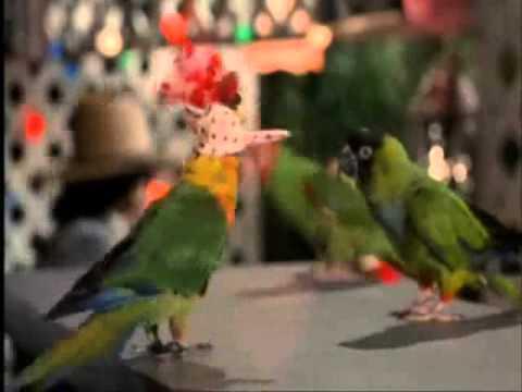 Paulie & Lupe sing & dance