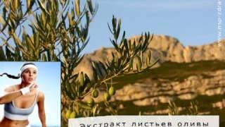 +++ Экстракт Листьев Оливы (Olive Leaf Extract) NSP +++