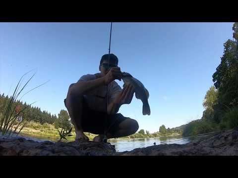 South Umpqua Smallmouth Bass Fishing Roseburg, Oregon