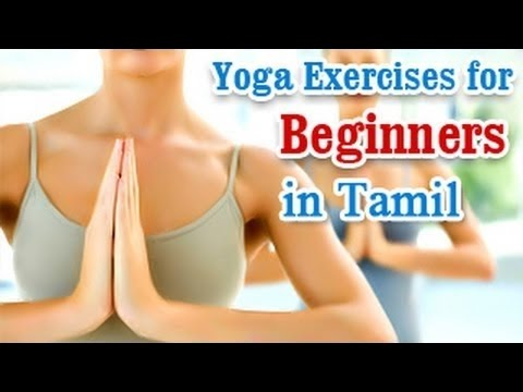 yoga for beginners  simple basic breathing stretching
