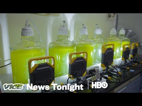 Algae For Energy & The Priest Of Blockchain: VICE News Tonight Full Episode (HBO)