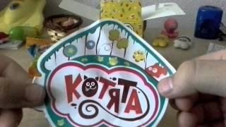 Обзор коробочки с котятами!^_^