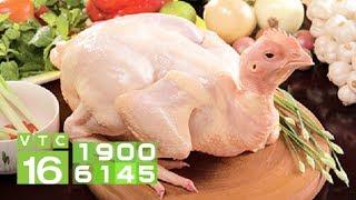 Thịt gà có thể là cứu cánh khi thịt lợn khan hiếm? | VTC16