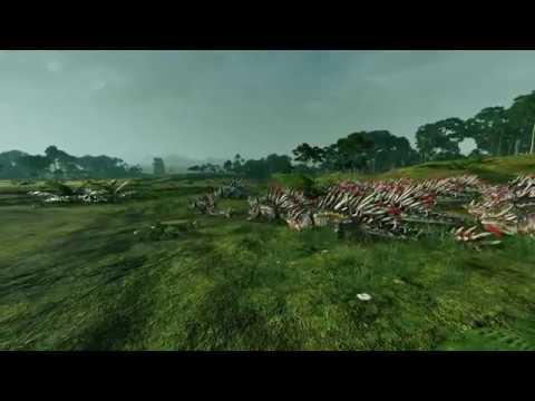 Razordons Race!