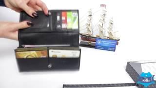 Женский кошелек из кожи Bretton Nappa W47 купить в Украине. Обзор