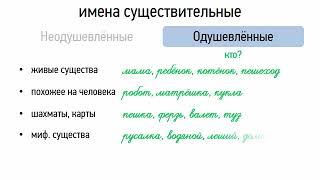 Одушевлённые и неодушевлённые имена существительные (6 класс, видеоурок-презентация)