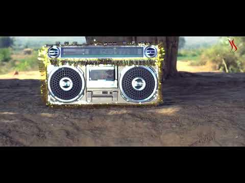Rajasthani Veena song Ghoomar DJ remix