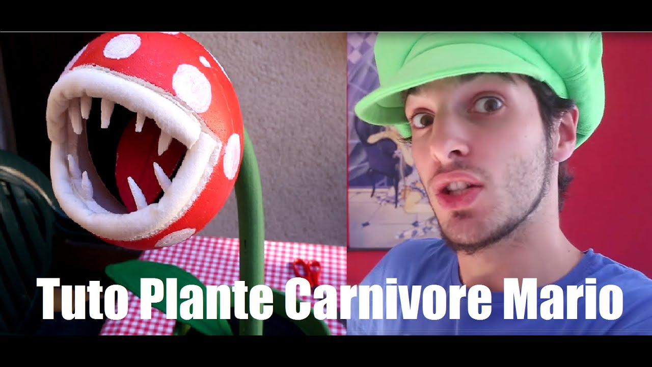 Tuto Express Plante Piranha Carnivore Mario Bros Youtube