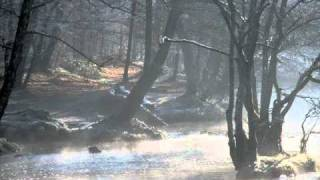 Ольга Пирагс - Дождевые кольца