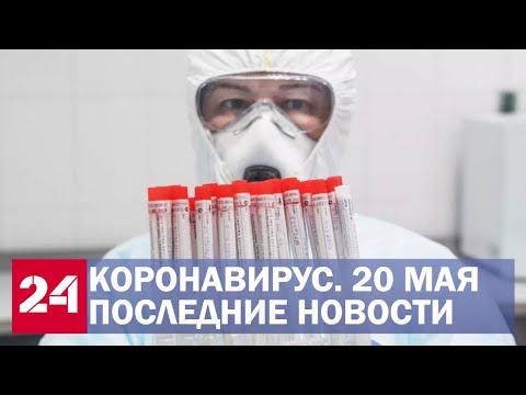 Коронавирус. Последние новости о ситуации с COVID-19 в России и мире