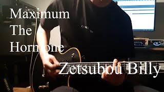 Maximum the Hormone - Zetsubou Billy マキシマム ザ ホルモン 絶望ビリ Guitar Cover