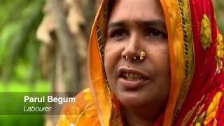Bangladesh: Breaking Down Barriers thumbnail