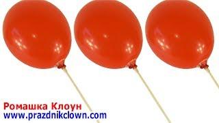 КАК ЗАКРЕПИТЬ ШАРИК НА ПАЛОЧКЕ-ДЕРЖАТЕЛЕ How To Use A Balloon Cup Holder Instructions