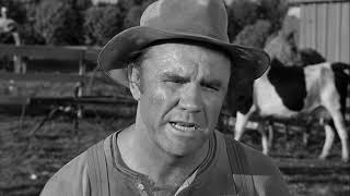The Andy Griffith Show: Andy's Upstanding thumbnail