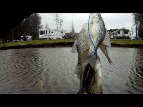 WINTER CRAPPIE FISHING WASHINGTON STATE