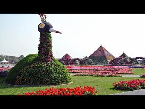 Miracle Garden Dubai – 2018 - Dubai, United Arab Emirates - World
