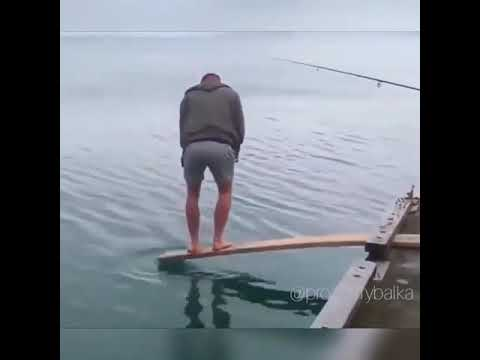 Awesome funny fish hunt