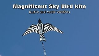 Magnificent Sky Bird kite - black and white