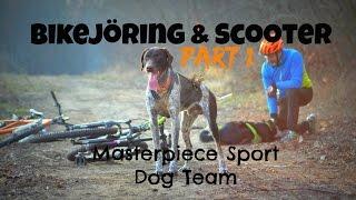 masterpiece sport dog team bikejring scooter part 1