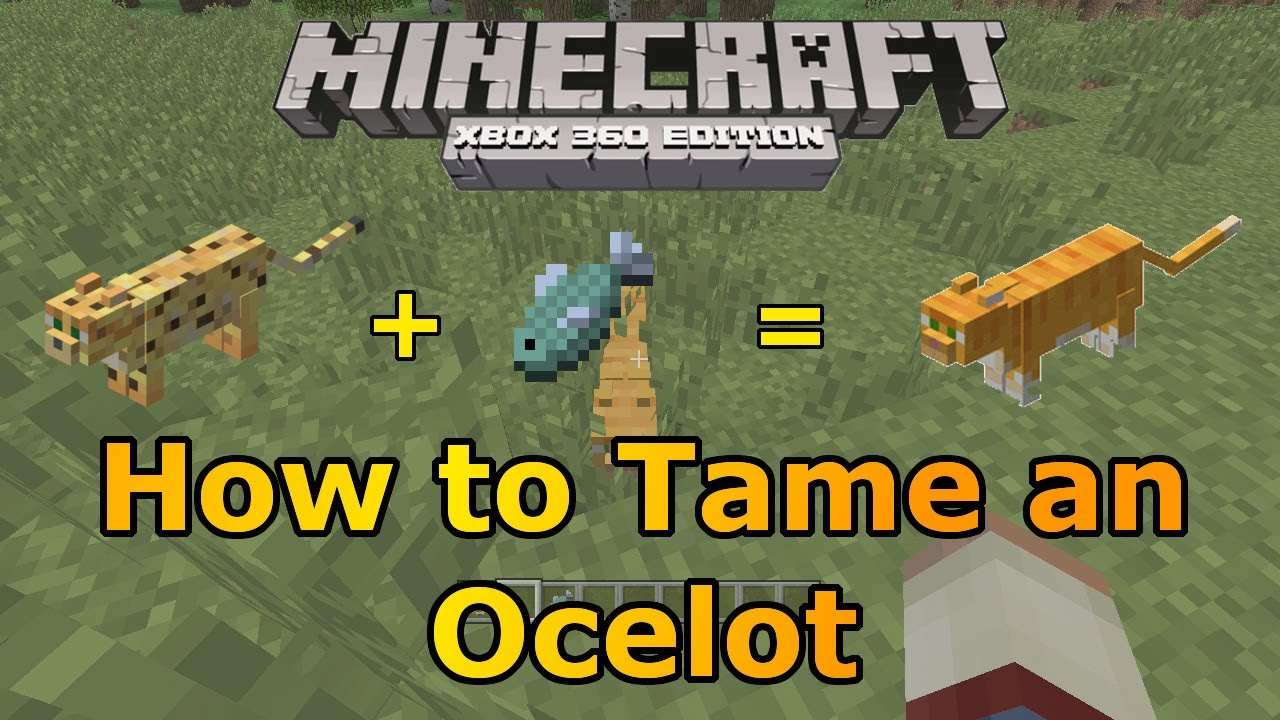 How to tame a cat in Minecraft 1
