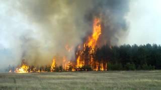 Лесной пожар в Самарской области. часть1