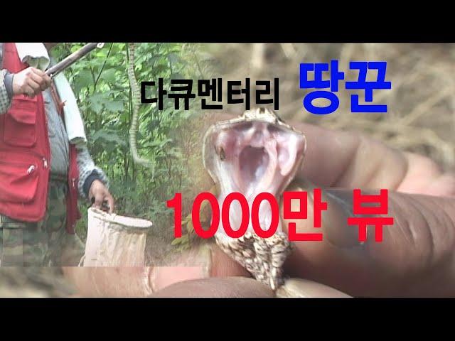 땅꾼  a snake hunter