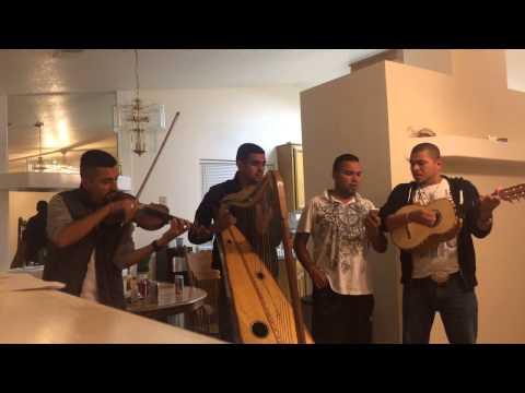 Los Pinos y Los Ciruelos- El Perico y su Banda Razilla Chiq
