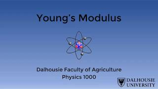 Young's Modulus Life Science Lab