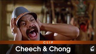 Cheech & Chong  - Noch mehr Rauch um nichts (Blu-ray - Trailer)