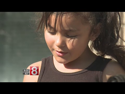 6-year-old girl attacked by pit bull