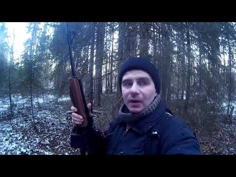 Охота на лося по первому снегу 2018