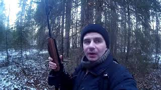 Охота на лося по первому снегу