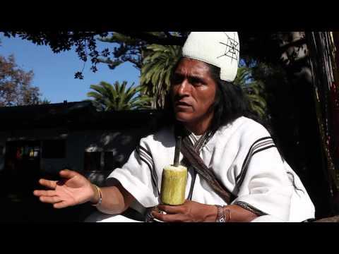 Mamo Lorenzo, Lider espiritual Arhuaco