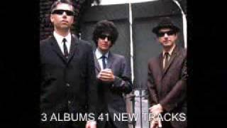 NEW 2009 BEASTIE BOYS- BRR STICKEM