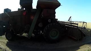Уборка пшеницы сезон 2018
