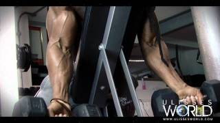 Video Ulisses Trains Arms Biceps and Triceps download MP3, 3GP, MP4, WEBM, AVI, FLV November 2017