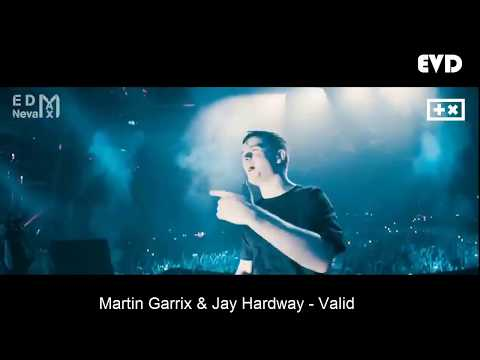 TOP IDs By Martin Garrix