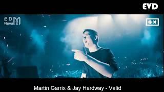 TOP IDs By Martin Garrix