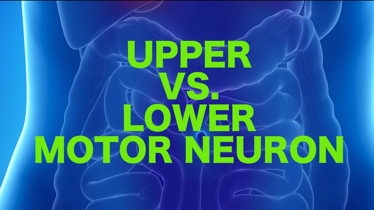 Upper Vs Lower Motor Neuron Lesions Usmle Youtube