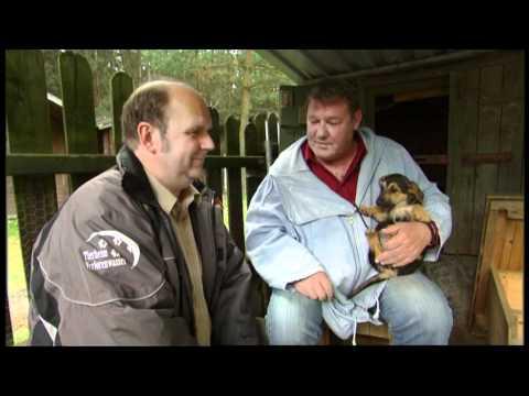 """""""Landarzt"""" Walter Plathe besucht das Tierheim Verlorenwasser"""