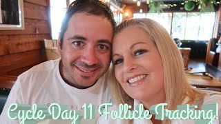 Day 11 Follicle Scan WOW! Cycle Day 13 Positive Ovulation Test!!