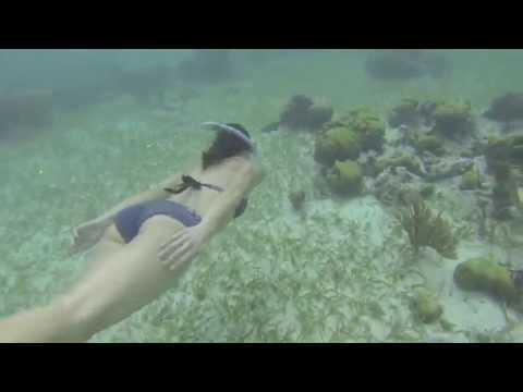 60 Second Travel: Snorkeling In Belize